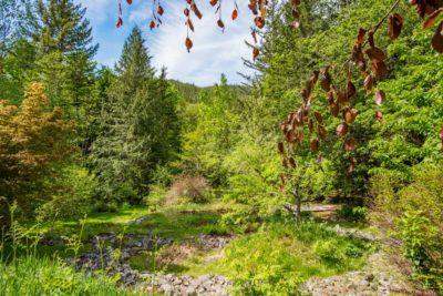 C-Dar Garden Squamish Paradise Valley