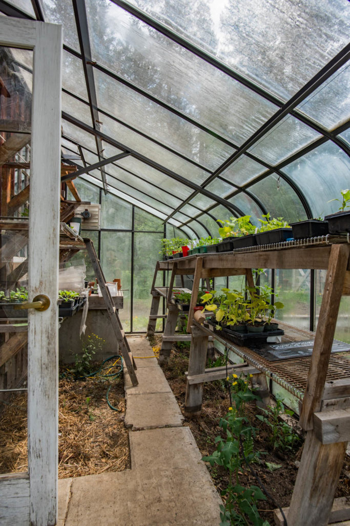 C-Dar Farm Greenhouse
